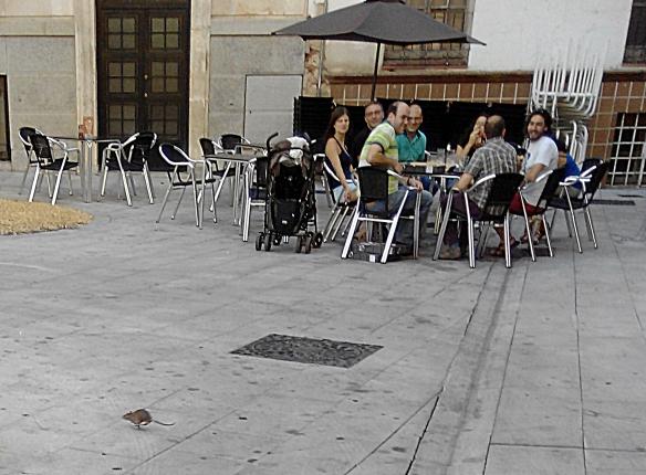 La rata Lola atraviesa corriendo la plaza. // Foto: M.P.