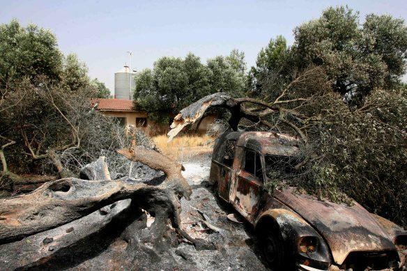 Finca afectada por el incendio de Horta de Sant Joan (Tarragona) de 2009, en el que murieron cuatro bomberos. // Foto: Jaume Sellart-Efe.